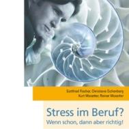 Fischer Eichenberg Mosetter Stress im Beruf m