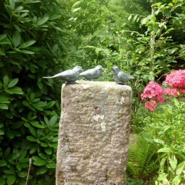 Garten im ZiT Gutach